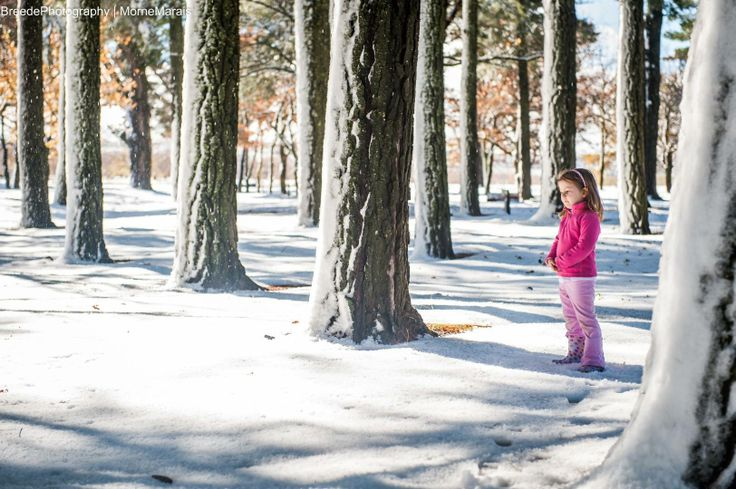 Morne Marais and his family really found some of the most beautiful snow spots it seems!   https://www.facebook.com/breedephotography