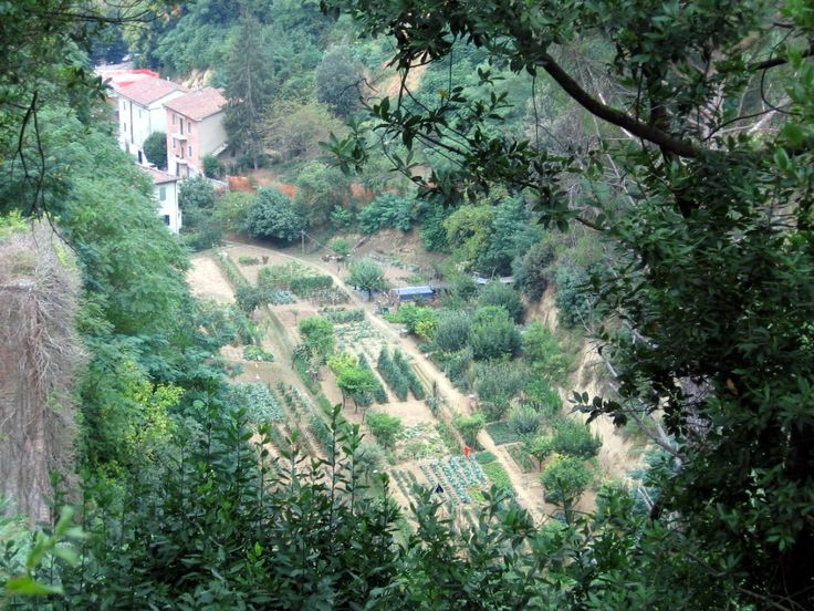 Siena: garden in the depth - Photo: Beata B.