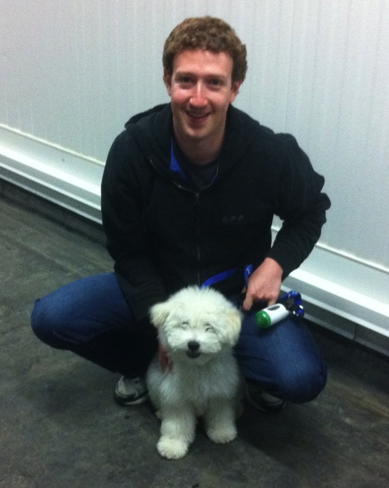 the most famous Hungarian PULI in the world: Mark Zuckerberg's Beast