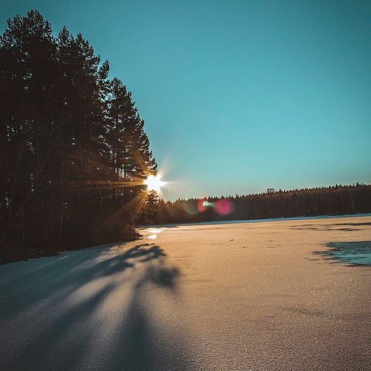 In the coldest moments your sun will come and shine on you!      #winter #motivation #canon #creator #freelance #motivationalquotes #motivate #canonphotography #instadaily #instadaily #instamood #landscapephotography #nature #naturephotography #photography #sweden #visitsweden #christmas #ig_nature #youngcreatives