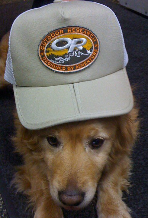 The top DOGS at Outdoor Research.  Customer Service Rep Wrigley wants you to know that every Outdoor Research product is backed by our infinite guarantee.