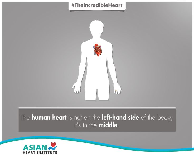 Do you know where your heart is located?  #TheIncredibleHeart #AsianHeartInstitute