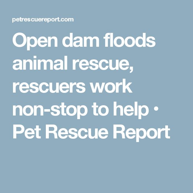 10+ beste ideeën over Flood report op Pinterest - Natuurrampen - Situation Report