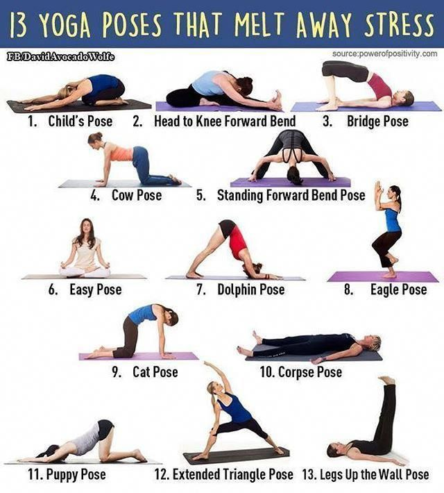 Top 5 Most Refreshing Ideas To Prevent Stress From Controlling You Yoga Stretches For Melting Stress How To Relieve Stress Types Of Yoga Easy Yoga
