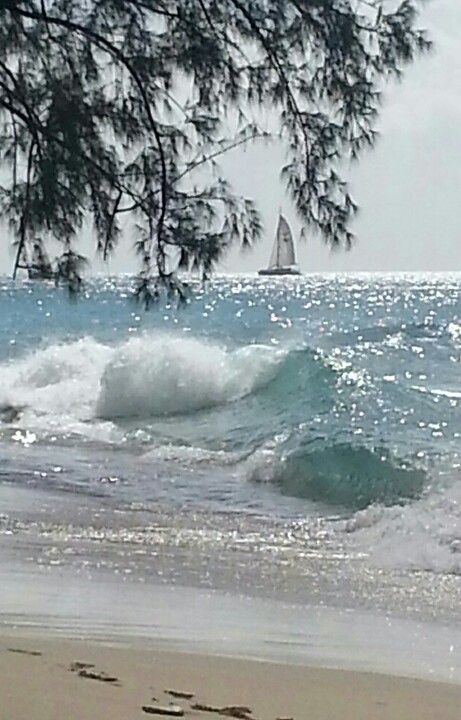 Barbados: I love this photo! It captures the sparkle of the ocean, on a sunny day!