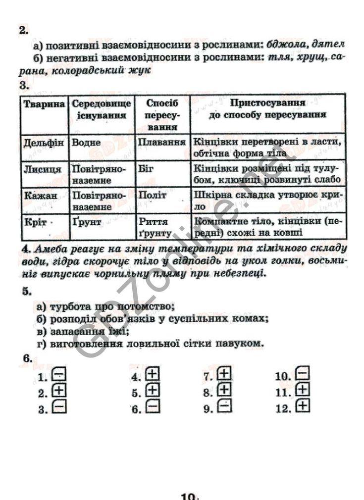 Бесплатно загрузить ответы на тетрадь котик таглина 11 класс