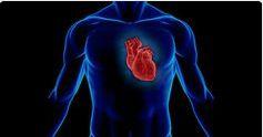 AIRLIFE MUNDIAL  te dice.  ¿Qué síntomas tiene el Ataque Cardiaco por contaminación? Son: • Dolor o malestar en el pecho (angina de pecho); otros se asemejan más a una indigestión. También se puede sentir dolor en los hombros, los brazos, el cuello, la mandíbula o la espalda. • Falta de aire (dificultad para respirar): por lo general ocurre antes o al mismo tiempo que las molestias en el pecho. • Otros síntomas: sudores fríos, náuseas, mareos. http://airlifeservice.com/