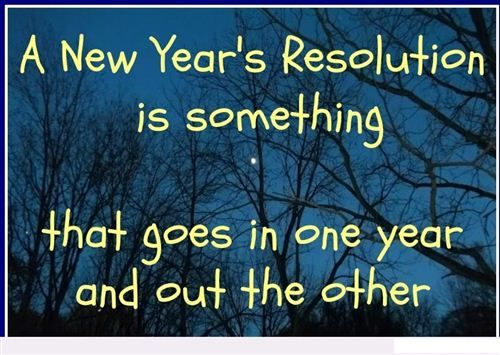 New Year Resolutions Funny | New Yearu0027s Resolution Is Something That Goes  In One Year And