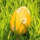 Unser+Oster-Basteltipp:+Ein+Nest+aus+Zweigen+für+den+Osterhasen