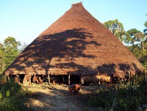 Maloca do povo Suruahá, cuja terra indígena é demarcada e fica em região remota do município de Lábrea, (Divulgação/Cimi)
