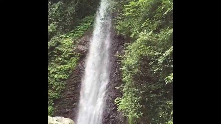 マイナスイオンをどうぞ‼️_養老の滝(岐阜県)