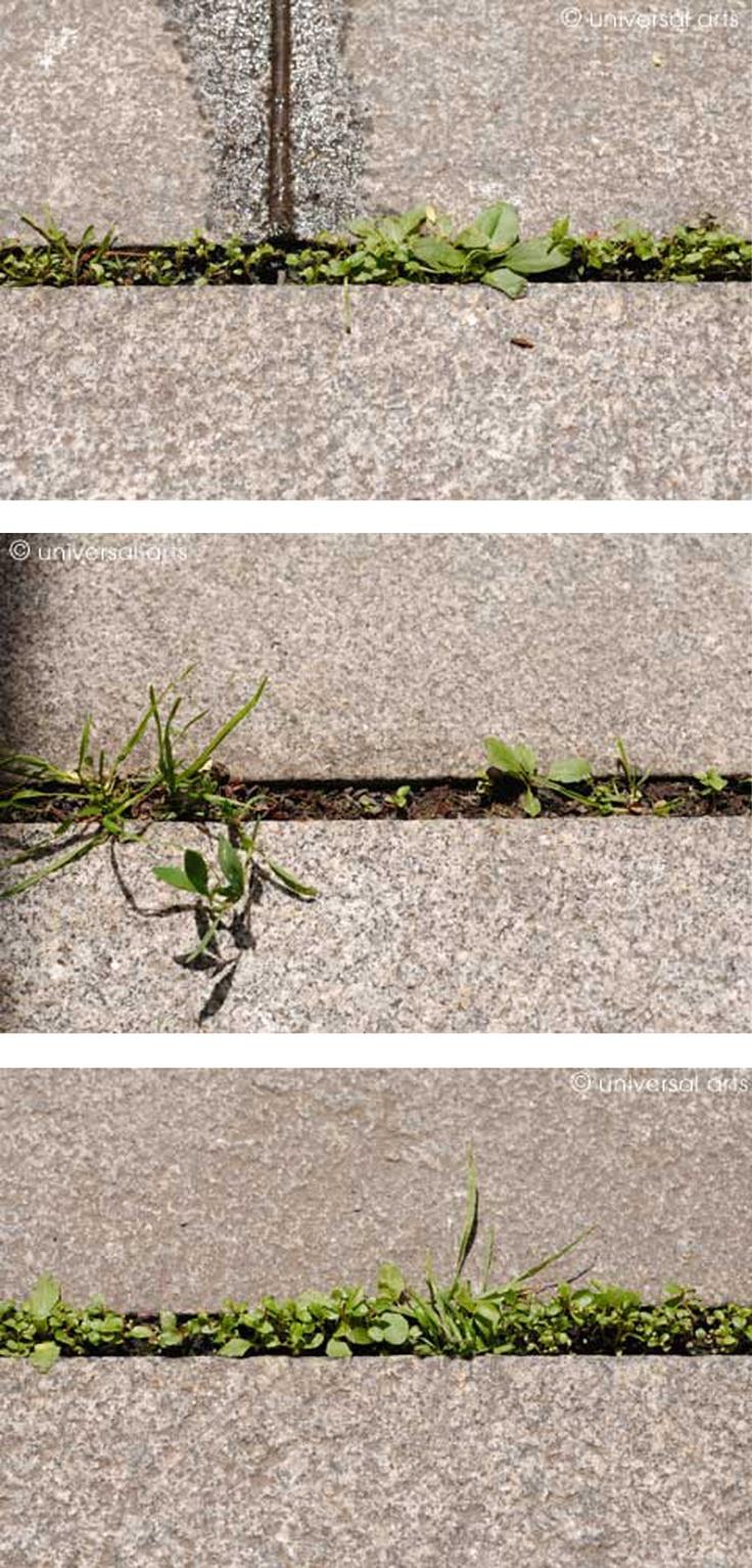 "Mario Strack - ""Lifeline 1,2,3"" Triptychon | myartmap"