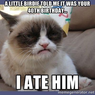 472 best HI-larious images on Pinterest | Birthdays, Happy ...