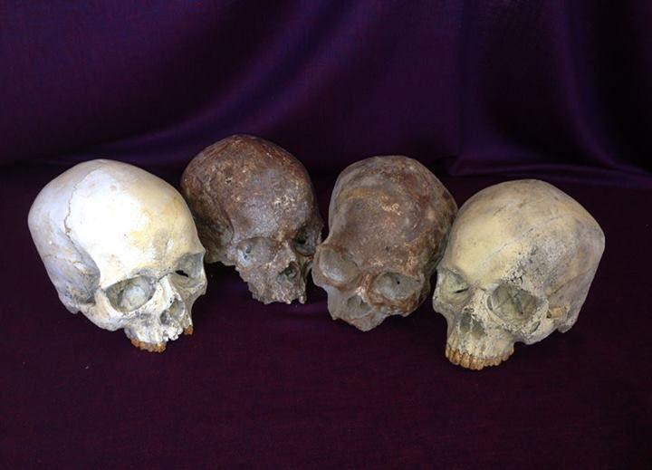 Teschi ritrovati in differenti epoche... #teschi #skulls #mummie