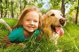 Bir çocuğun hayvanla büyümesinin yedi faydası ajanimo.com'da.. #ajanimo #ajanbrian #çocuk #hayvan #dog #animal #köpek #child
