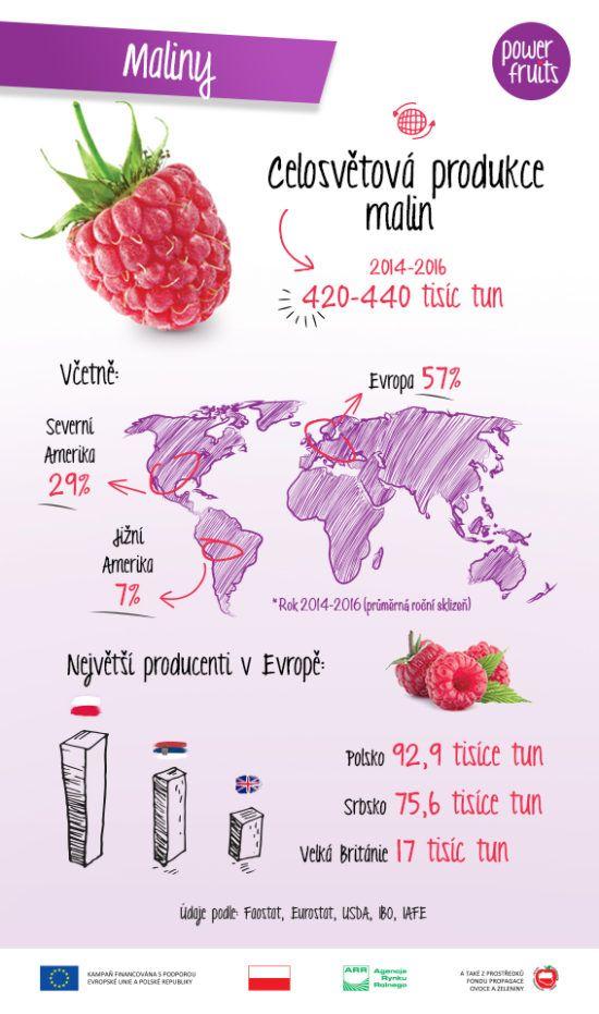 Power Fruits ví o ovoci všechno. Přečtěte si zajímavá fakta o malinách!