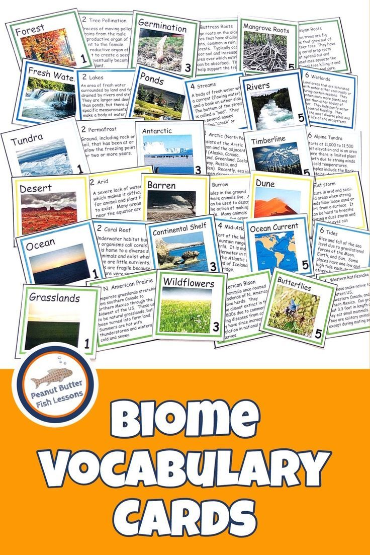 These Biome Vocabulary Concept Of The Day Cards Allow You To Teach One Concept A Day Covering One Biome Per Month Seve Biomes Vocabulary Teaching Vocabulary [ 1103 x 736 Pixel ]