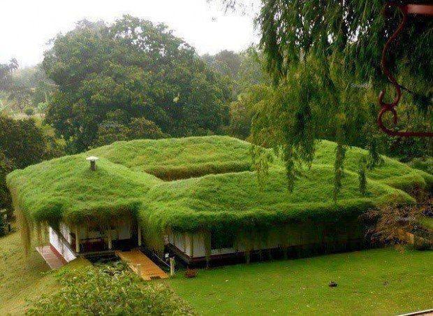 Casas extrañas. Más sobre sostenibilidad en www.solerplanet.com