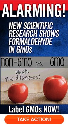 Breaking: New Study Shows Genetic Engineering Disrupts Basic Cellular Functions in GMO Plants - Finds Cancer-Causing Chemical Formaldehyde Accumulates in GMO Soy! | Food Democracy Now