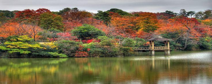 Fall Leaves Ponds Computer Wallpaper Best 25 Autumn Desktop Wallpaper Ideas On Pinterest