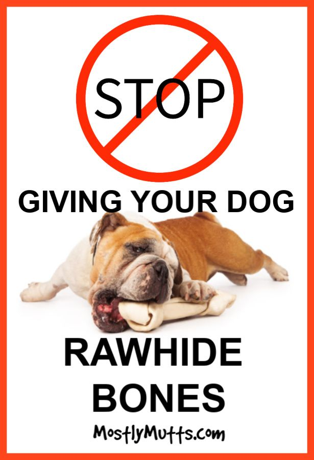 Are Rawhide Bones Bad For Dogs Rawhide Bones Dogs Your Dog