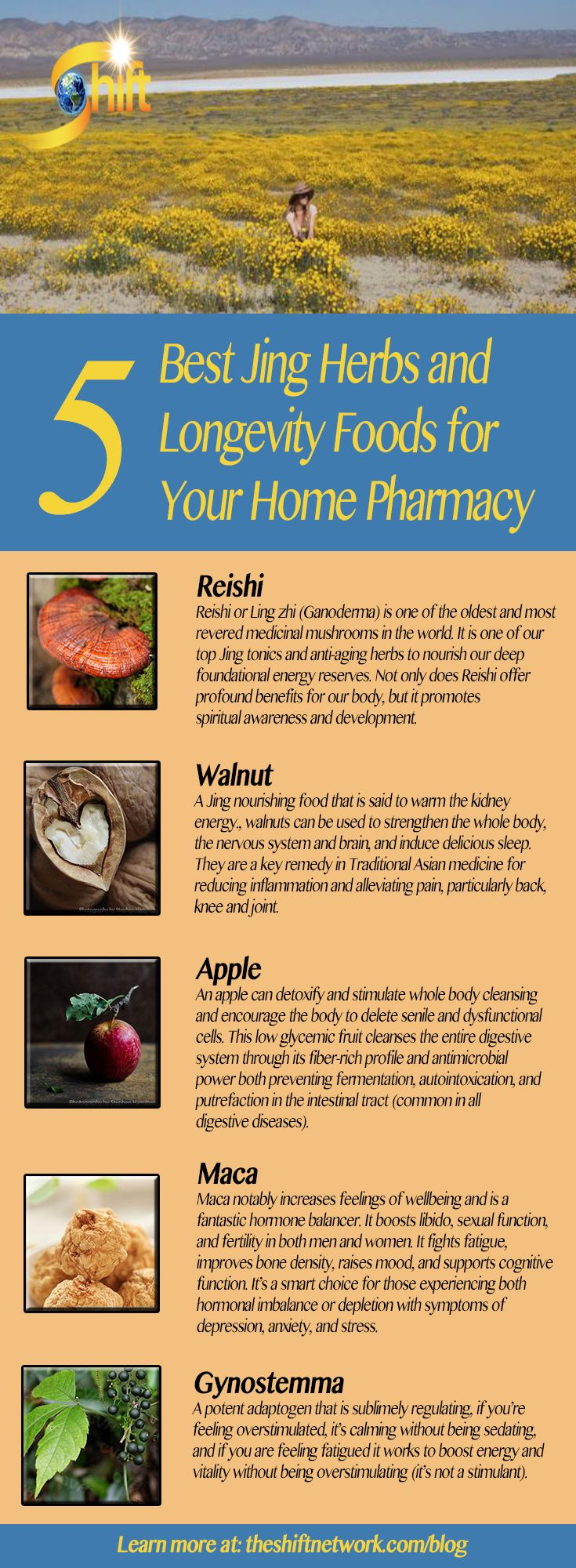 5 Best Jin Herbs and Longevity Foods for Your Home Pharmacy - In Traditional Asian Medicine, our core energy is called Jing. It is related to our vitality, longevity, creativity, adaptability and resistance to illness. Keep certain herbs and foods in your home pharmacy to boost your Jing including the following herbs. http://blog.theshiftnetwork.com/blog/5-best-jing-herbs-and-longevity-foods-your-