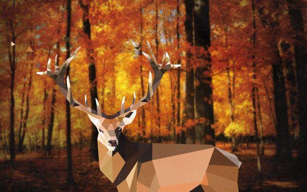 Oh deer, on Behance