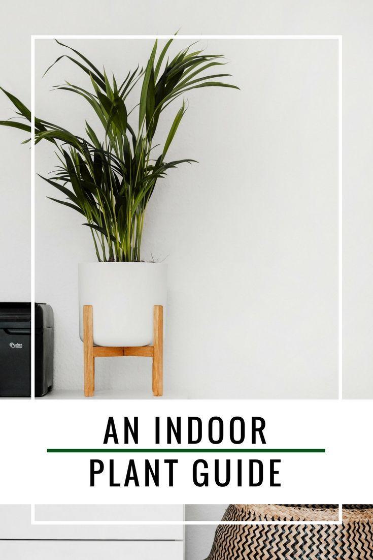 30 Best Интерьер images in | interioare, case, interioare case