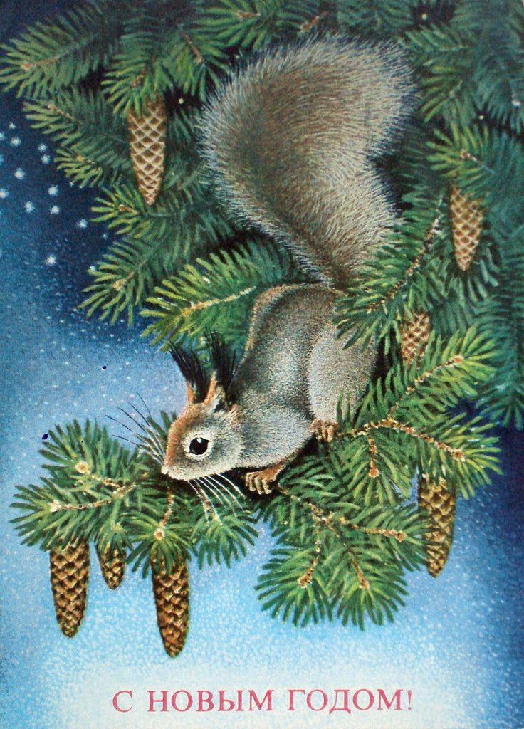 Стихами благодарности, белка открытки с новым годом