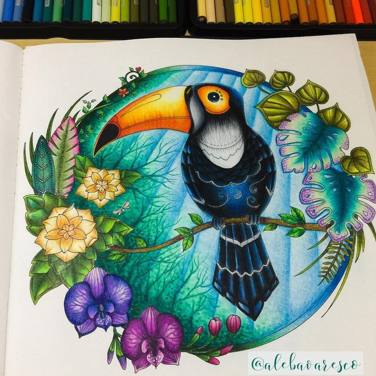Adult Coloring Pages Books Johanna Basford On Instagram Ale Prismacolor Colour Colored Pencil Tutorial