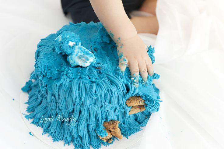 """O ensaio de fotos do primeiro aniversário do do Dudu foi um arraso com o bolo de Cookie Monster da nossa parceira @luanadavidsohn Um divertido """"smash-the-cake""""11"""