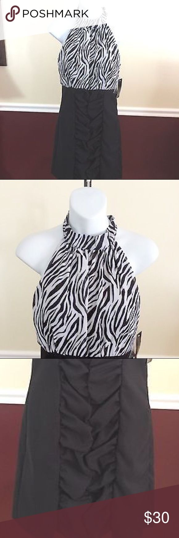 Black and white zebra print dress Brand new. Black and white zebra print dress. Has gathered section in the front. Halter style. Size (3/4) Alyn Paige Dresses