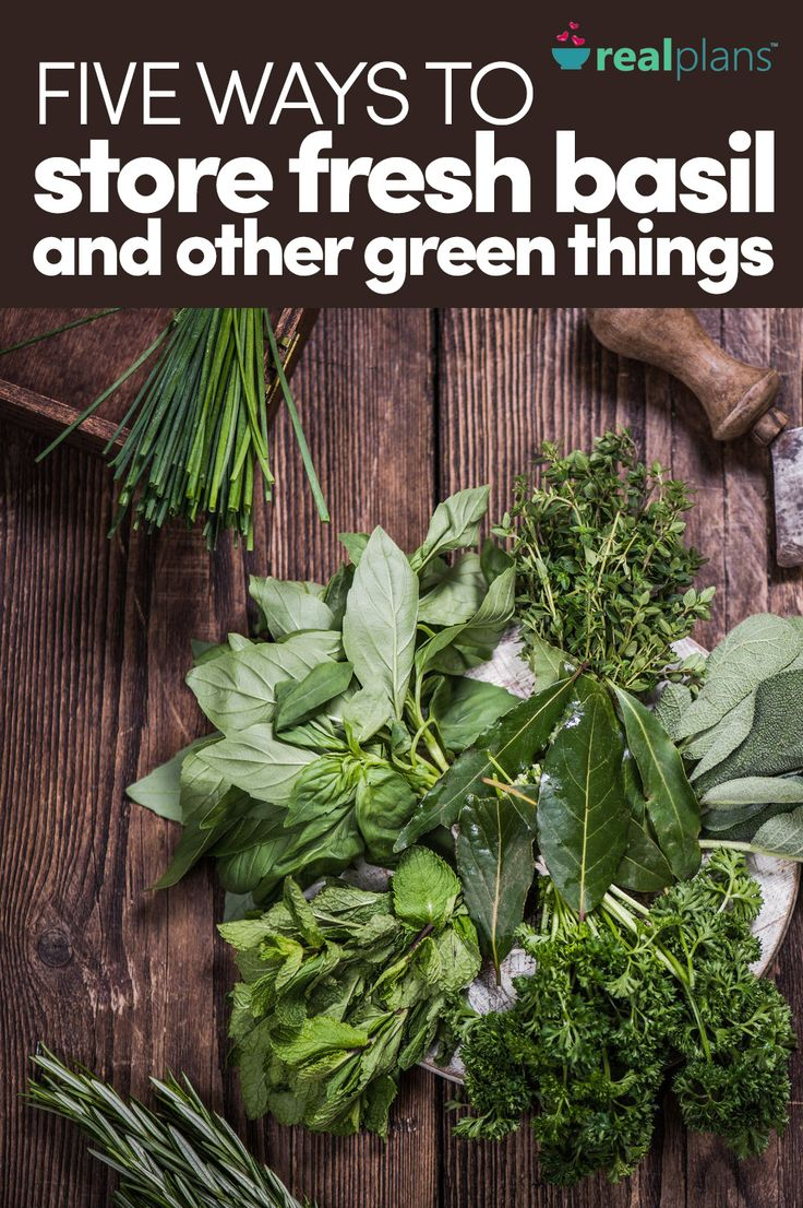 Five Ways To Store Fresh Basil And Other Green Things - https://realplans.com/blog/how-to-store-fresh-basil-and-other-green-things/