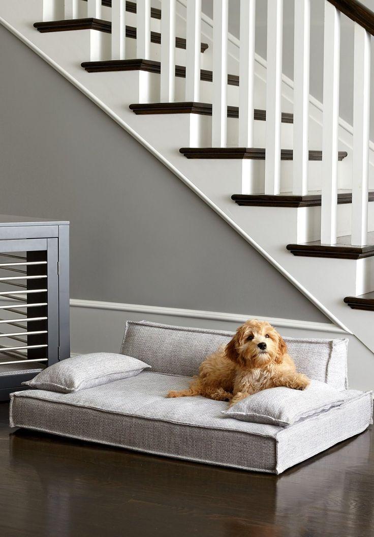 Moderno Pet Bed Pet sofa, Pet bed, Cozy nights