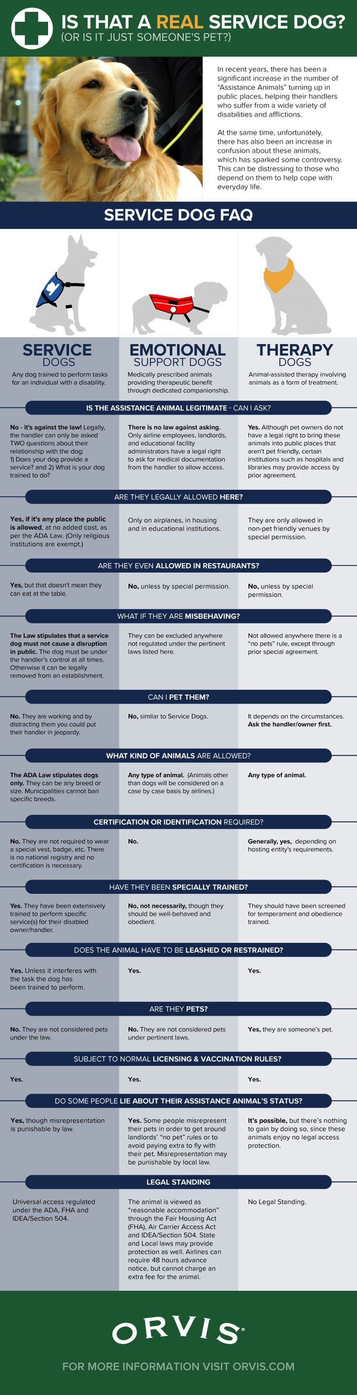 18 best Professional Rants & Venting images on Pinterest | Cartoon ...