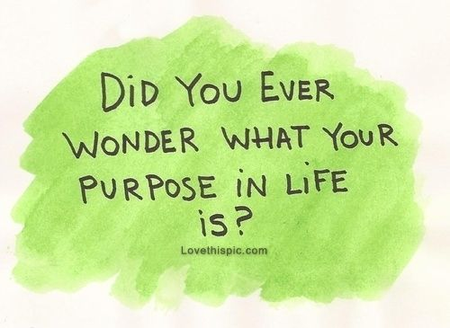 did you ever wonder what your purpose in life is life