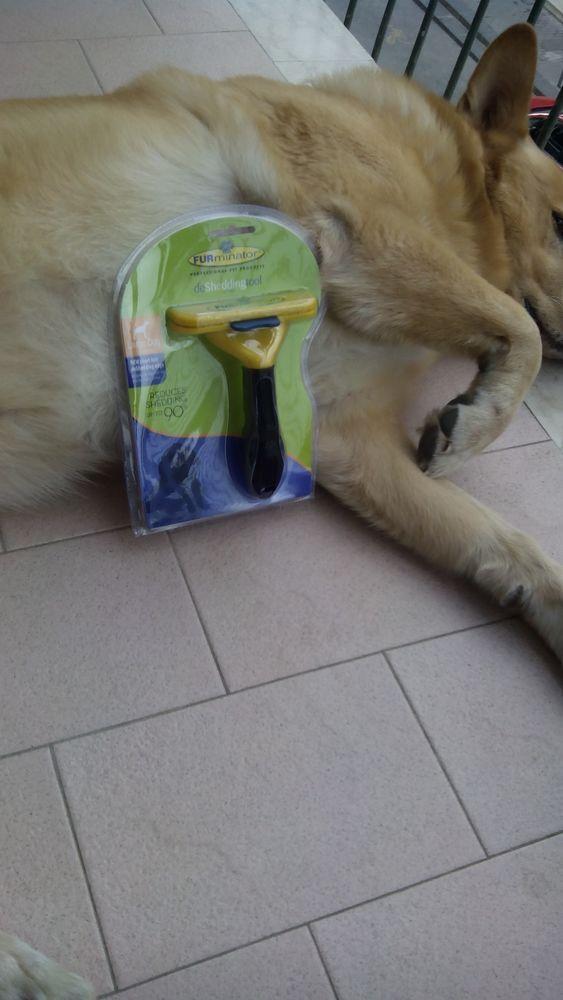Spazzola nuova per cani Furminator.