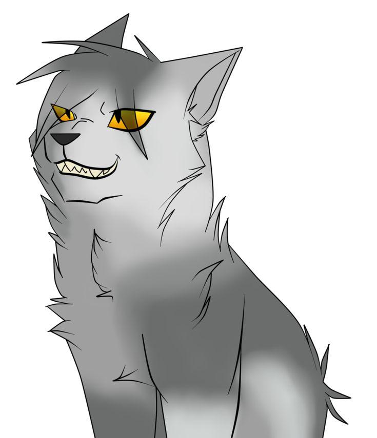 Крутые картинки коты воители