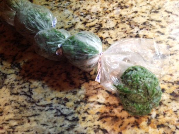 Frozen Kale - easy way to store kale according to serving size and keep it from going to waste!