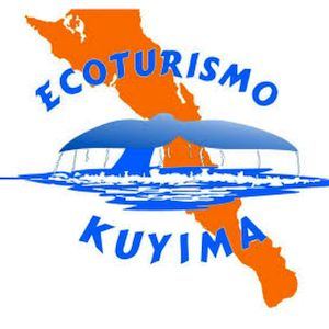 Ecoturismo Kuyima en Baja California te ofrece la oportunidad de vivir una experiencia única e inolvidable: compartir con la majestuosa ballena gris.