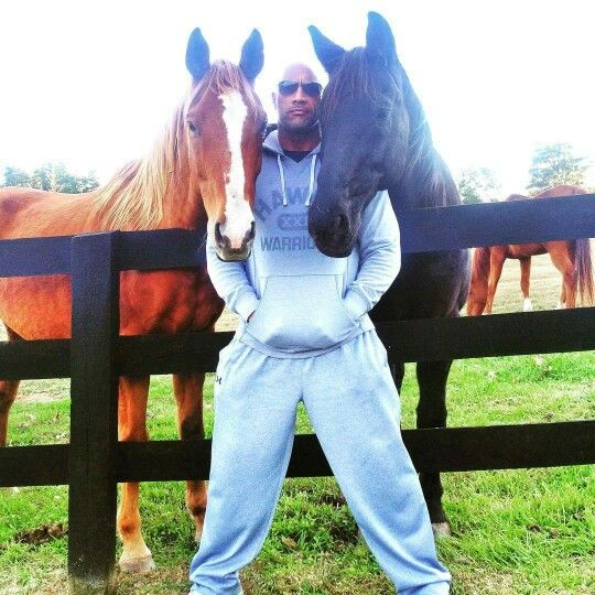 The Rock and his horses