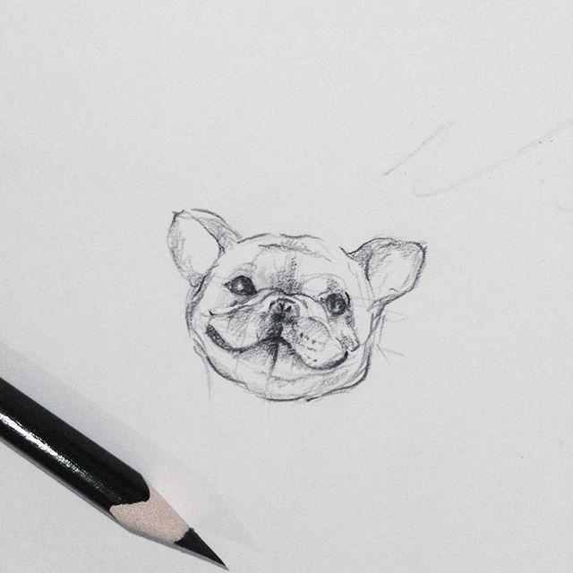 Dogi bulldogi )) ❤️#tattoo #lublintattoo #greenhornet #sketch #strashkeva #bulldog #minimalism