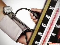 Khasiat Tanaman Obat Herbal : Bagaimana Konsumsi Bayam (Amaranthus L) bagi Penderita Hipertensi ?