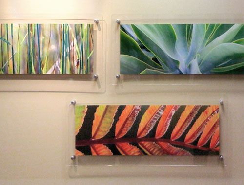 Funky Panoramic Acrylic Frame Ornament - Custom Picture Frame Ideas ...