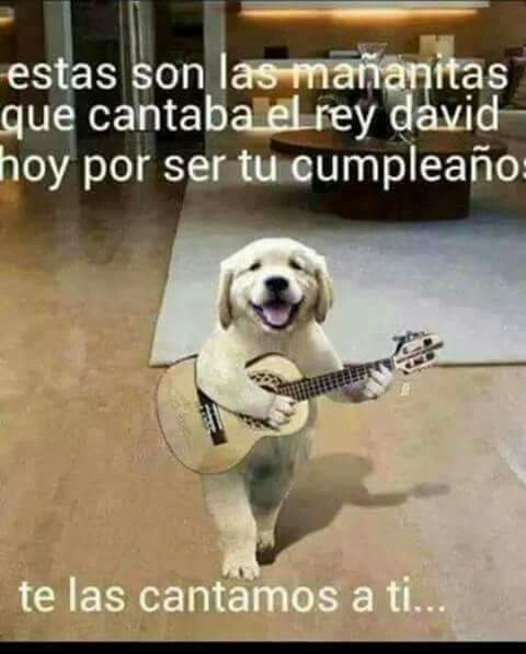 Feliz Cumpleaños  http://enviarpostales.net/imagenes/feliz-cumpleanos-81/ felizcumple feliz cumple feliz cumpleaños felicidades hoy es tu dia