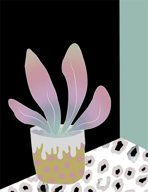 house plant illustration