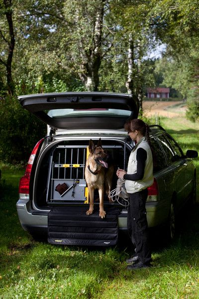 MIM Variocage World's Safest Dog Transport Crate- Double – Heavy Duty Pet Crates #petsafety #carrides #hunting