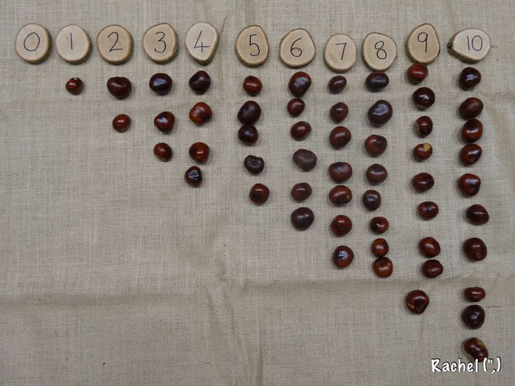 "Counting conkers - from Rachel ("",)"