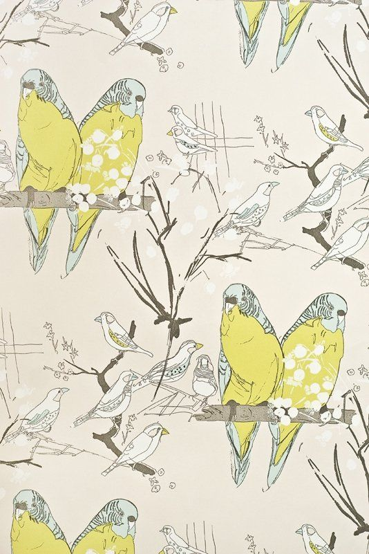 Budgie Wallpaper A lovely wallpaper with drawings of perched Budgies in aqua and green on a stone paper.
