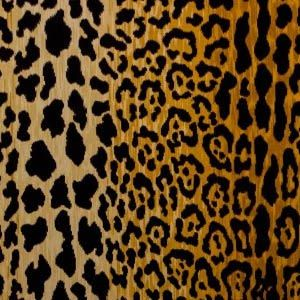 Braemore Jamil Natural - the perfect leopard to re-upholster with